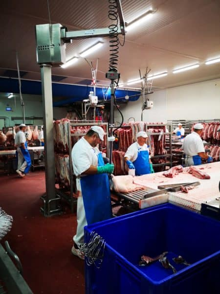 Handling meat with an intelligent device for handling INDEVA